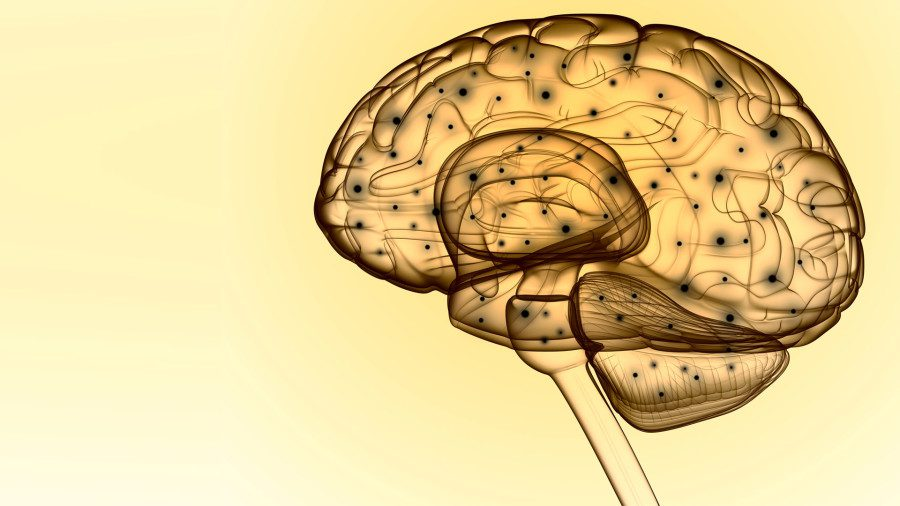 mindfulness, meditación, cambios cerebro, regulación emociones, estrés, ansiedad